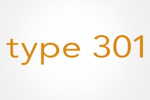 type 301 Schneidwaren / Messer