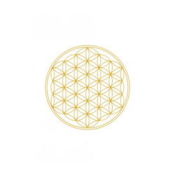 Trinkflasche FLOWER OF LIFE 1 Liter